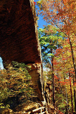Photograph - Natural Bridge In Autumn by James Kirkikis