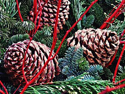 Natural Christmas 4 Art Print