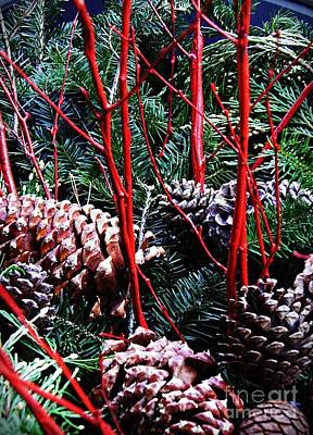 Pine Cones Photograph - Natural Christmas by Sarah Loft