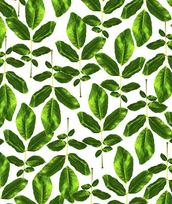 Digital Art - Natural Cure by Uma Gokhale