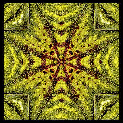 Mixed Media - Natural Design 1 by Jesus Nicolas Castanon