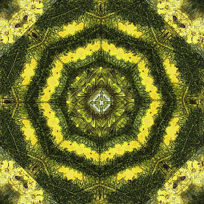 Mixed Media - Natural Design by Jesus Nicolas Castanon