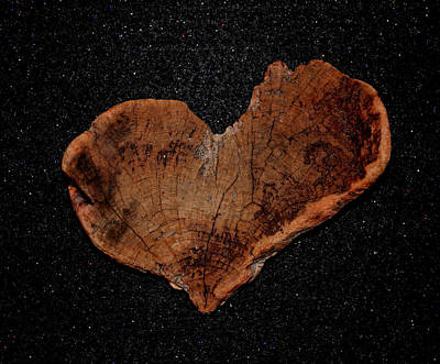 Photograph - Natural Driftwood Heart #1 by Larry Bacon