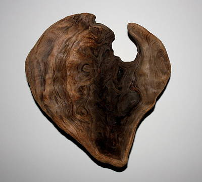 Photograph - Natural Driftwood Heart #5 by Larry Bacon