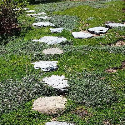 Pathway Photograph - #natural Feeling #stone #pathway At by Lisa Marchbanks