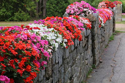 Photograph - Natural Floral Wall by Living Color Photography Lorraine Lynch