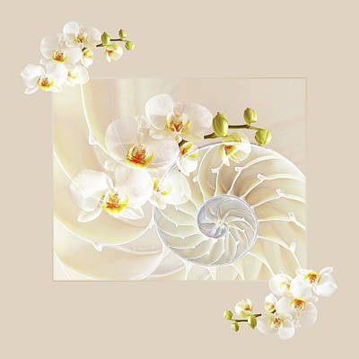 White Orchids Photograph - Natural Fusion by Gill Billington