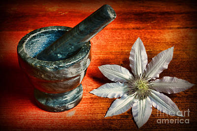Mortar Photograph - Natural Healing by Paul Ward