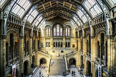 Photograph - Natural History  by Michael Hope