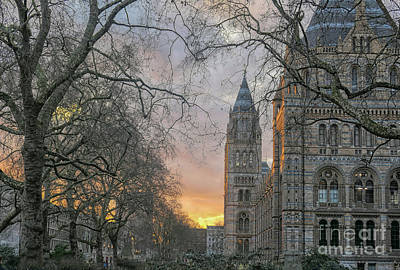 Photograph - Natural History Museum In London by Patricia Hofmeester