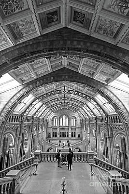 Photograph - Natural History Museum London 4 by Julia Gavin