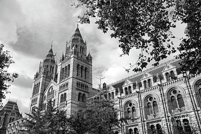 Photograph - Natural History Museum London by Julia Gavin