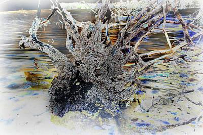 Photograph - Natural Inversion - 3 by Amanda Vouglas