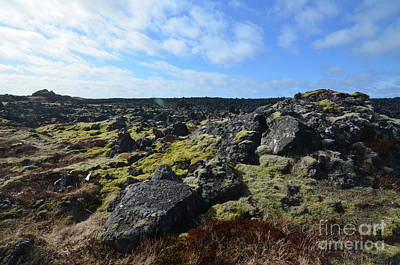 Photograph - Natural Lava Field In Iceland With Volcanic Rocks  by DejaVu Designs