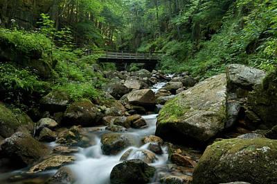 Photograph - Natural Paradise by Paul Mangold