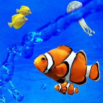 Clown Fish Photograph - Nature 2 Of 4 by Bibi Romer