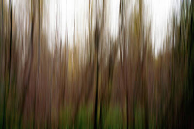 Photograph - Nature Abstract No. 01 by Pictorial Decor