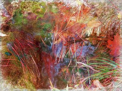 Digital Art - Nature Abstract by Rusty R Smith