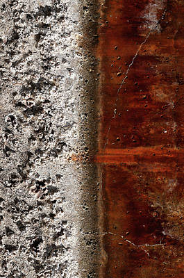 Photograph - Nature And Rust by Pedro Cardona