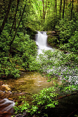 Photograph - Nature At Her Most Beautiful by Debra and Dave Vanderlaan
