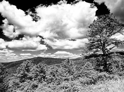 Photograph - Nature At Shenandoah National Park by John Rizzuto