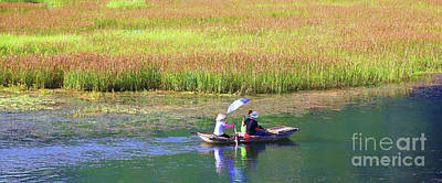 Photograph - Nature Boat Tour Van Long Vietnam by Chuck Kuhn