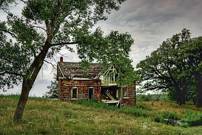 Photograph - Nature Encroaches - 4 by Nikolyn McDonald
