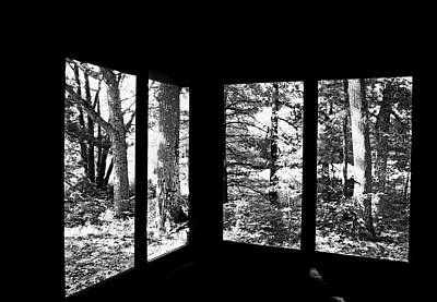 Photograph - Nature Framed Black And White by Debbie Oppermann