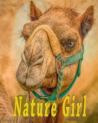 Photograph - Nature Girl Camel by LeeAnn McLaneGoetz McLaneGoetzStudioLLCcom