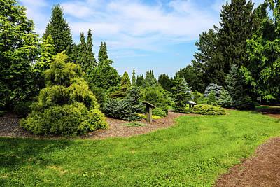 Photograph - Nature Green by Britten Adams