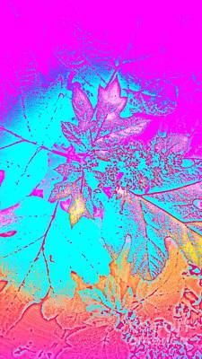 Digital Art - Nature Imprint 1 by Rachel Hannah