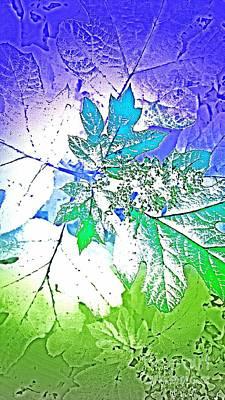 Digital Art - Nature Imprint 3 by Rachel Hannah