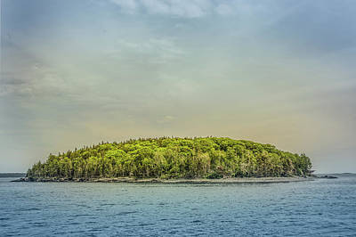 Photograph - Nature Island by Elvira Pinkhas