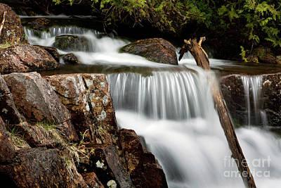 Photograph - Nature by Karin Pinkham