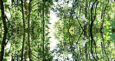 Photograph - Mirrored Green by Leanne Seymour