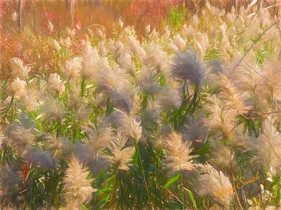 Digital Art - Nature On Display  by Rusty R Smith