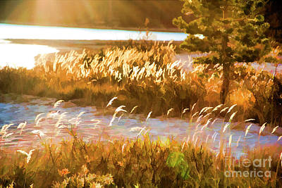 Photograph - Nature Paint Yosemite Landscape  by Chuck Kuhn