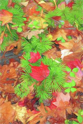 Digital Art - Nature Patterns by Rusty R Smith