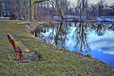 Photograph - Nature Reflections by Pat Cook