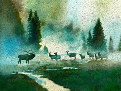 Nature Scene Art Print by Anthony Fishburne