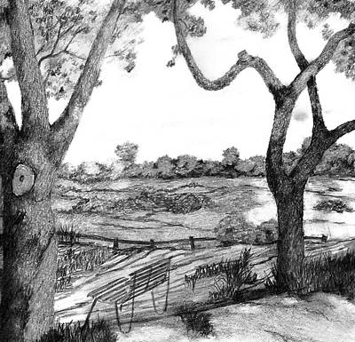 Art Print featuring the drawing Nature Sketch by John Stuart Webbstock