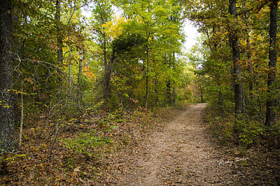 Photograph - Nature Trail by Ricky Dean