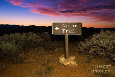 Photograph - Nature Trail Sign At Sunrise by Bryan Mullennix