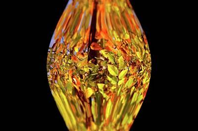 Photograph - Nature Vase 2 by Angie Tirado