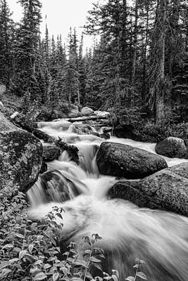 Photograph - Nature Waterworks In Black And White by James BO  Insogna