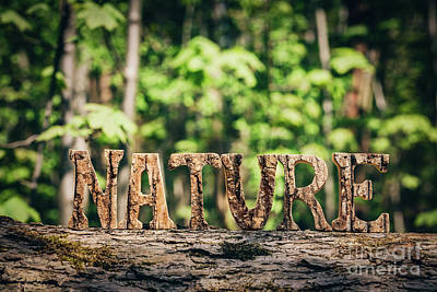 Photograph - Nature Writing Made From Wooden Letters In The Forest by Michal Bednarek