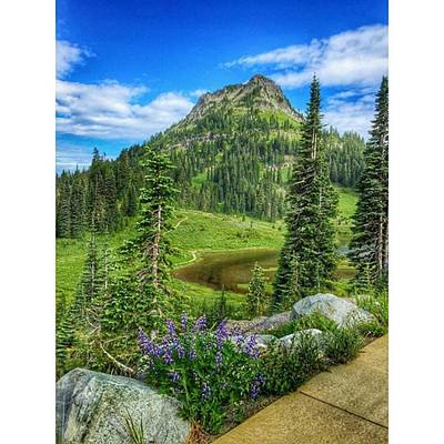 Trail Wall Art - Photograph - Natures Beauty #visitwashingtonstate by Joan McCool