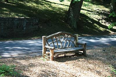 Photograph - Natures Bench by John Telfer
