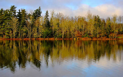 Reflective Waters Photograph - Nature's Best by Kathleen Sartoris