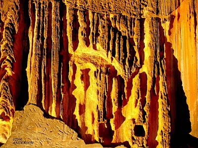 Photograph - Nature's Cathedral by VIVA Anderson